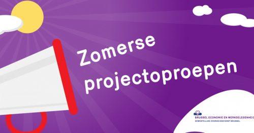 Zomerse projectoproepen